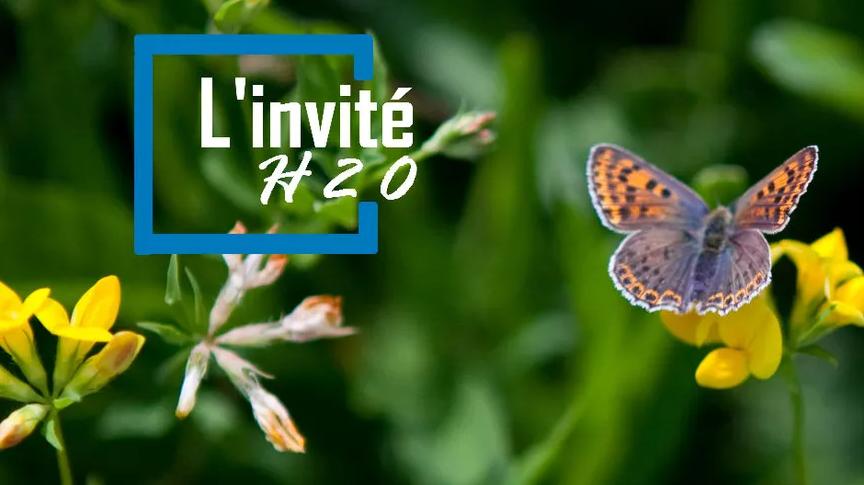 SCoT et Paysage Émission France Bleu Auvergne H2O – février 2020
